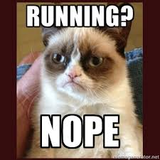 grumpy cat run
